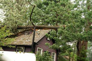 roofing damage image